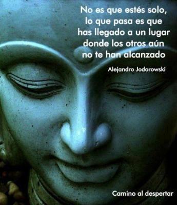 """""""No es que estés solo, lo que pasa es que has llegado a un lugar done los otros aún no te han alcanzado."""" Alejandro Jodorwski"""