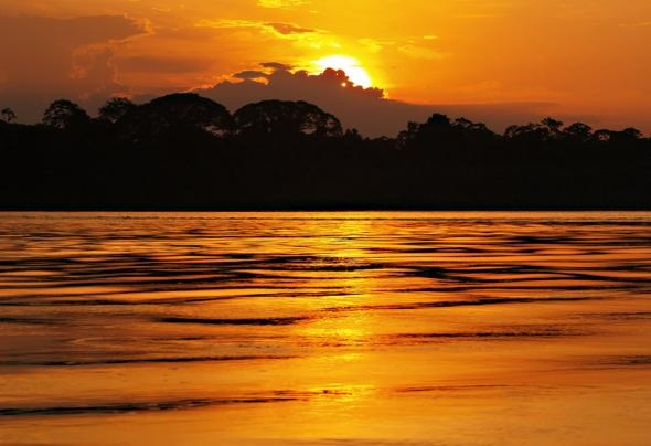 Amazon Rainforest, South America | Best places in the World