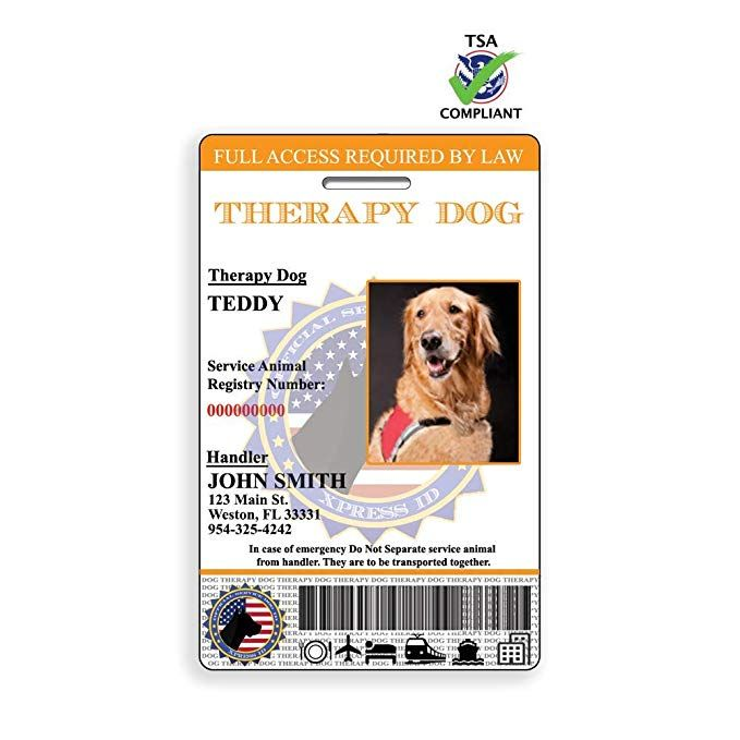Xpressid Holographic Therapy Dog Id Card Custom Emotional