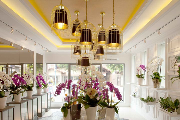 The focal point is on the costumed gold tone hanging lamps that also brings out…