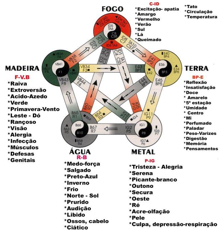 ciclo medicina chinesa
