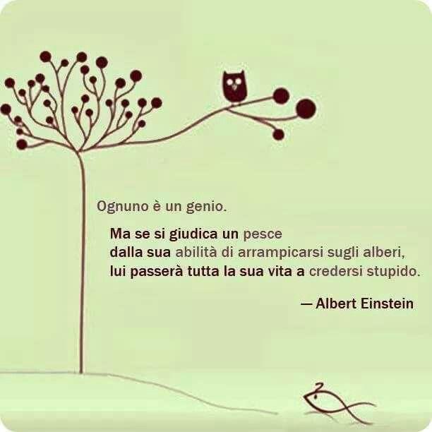 Ognuno è un genio