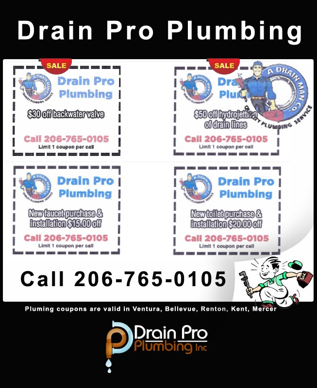Residential Plumbing services-Drain pro Pumbing Inc has been serving the King County, Pierce County, Snohomish County areas as a full service plumbing contractors. We offer 24/7 emergency plumbing services. Drain Pro Plumbing Inc plumbers have extensive experience and the highest quality of service for your complex. drainproplumbing.net