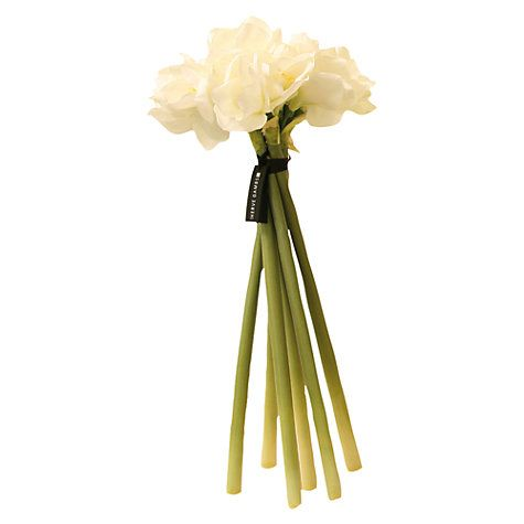 Buy Hervé Gambs Amaryllis Bouquet, White Online at johnlewis.com