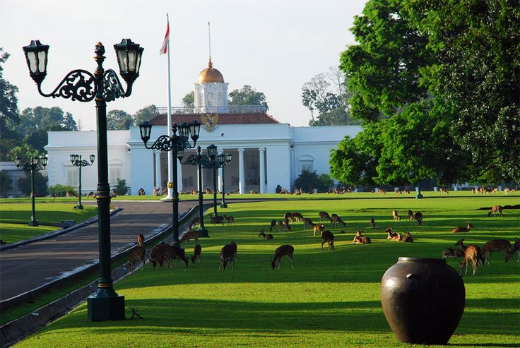 what best thing to do in Bogor? Here Travelicious give you ideas about things to do in Bogor, the charming city of rain.