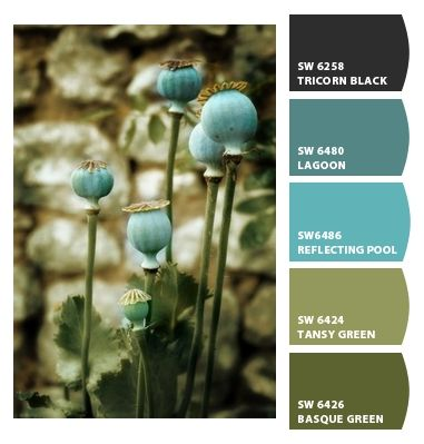 Lagoon!  Paint colors from Chip It! by Sherwin-Williams
