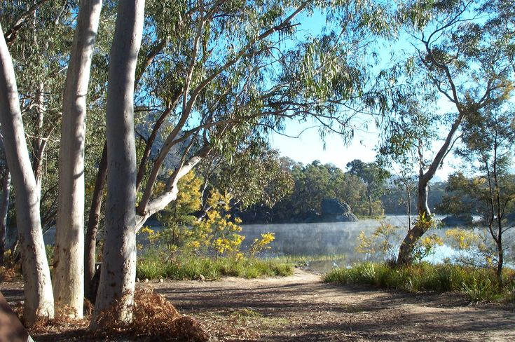 Dunns Swamp - Ganguddy campground, Wollemi National Park. Photo: Chris Pavich
