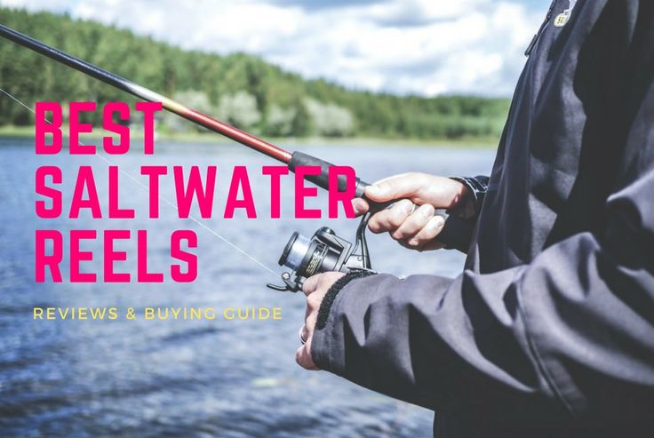 Looking for the best saltwater reels? We have mentioned some best saltwater spinning reels and baitcasting reels. A detailed review of saltwater reels.