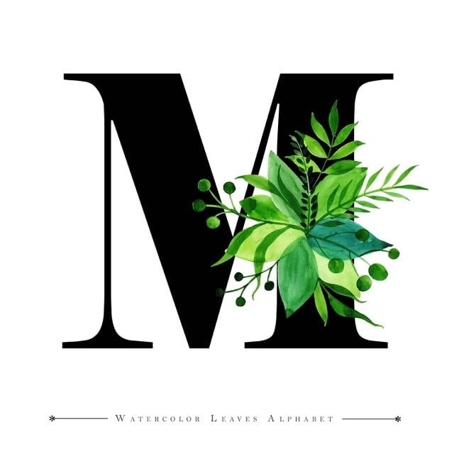 Letter M With Watercolor Leaves Background M Clipart Watercolor Color Png And Vector With Transparent Background For Free Download Monogram Wallpaper Lettering Alphabet Fonts Watercolor Leaves