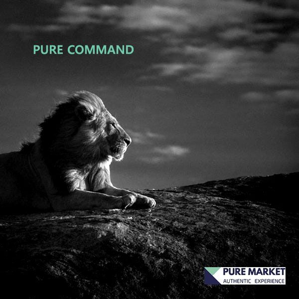 PureMarket - Advanced Forex trading broker for advanced traders.
