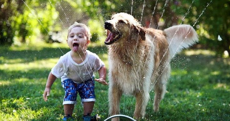 Κατοικίδιο: Ποια τα οφέλη της συνύπαρξης ενός παιδιού με ένα συμπαθές ζωάκι; http://ift.tt/2uL553c