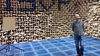 Studying human echolocation in the quietest place on earth.  Anechoic chamber, University of Southampton