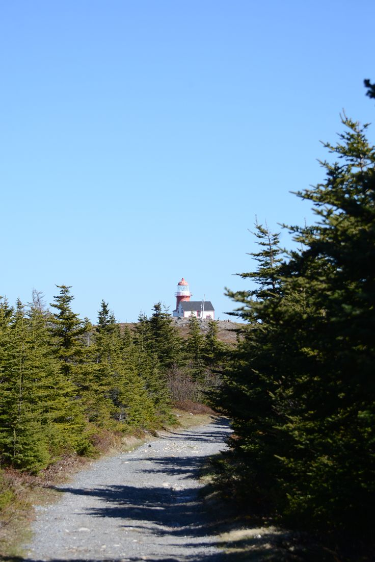 A visit to Newfoundland has been on my bucket list for a few years now, I can thank Ferryland for prompting me to actually do something abou...