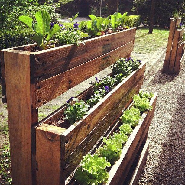 Vertical Garden Diy, Diy Herb Garden, Palette