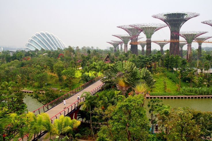 gardens by the bay is one of the worlds most amazingly landscaped gardens and one of singapore top attractions worldtravelplaces pinterest