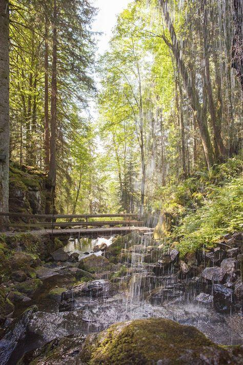 Wandertipp: Geißenpfad in Menzenschwand im Schwarzwald © Hochschwarzwald Tourismus | Mein schönes Land bloggt