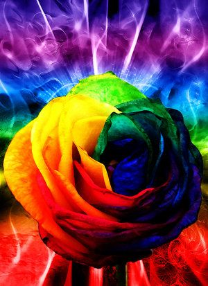 7 Signs You May be a Rainbow Warrior – Fractal Enlightenment