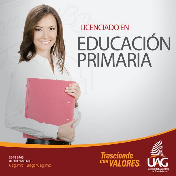 Como Licenciado en Educación Primaria podrás desempeñarte como maestro en escuelas primarias públicas o privadas.
