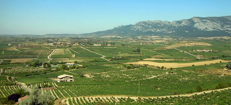 La Rioja Alavesa - By G. Villar (Own work) [CC BY-SA 3.0 es (http://creativecommons.org/licenses/by-sa/3.0/es/deed.en)], via Wikimedia Commons