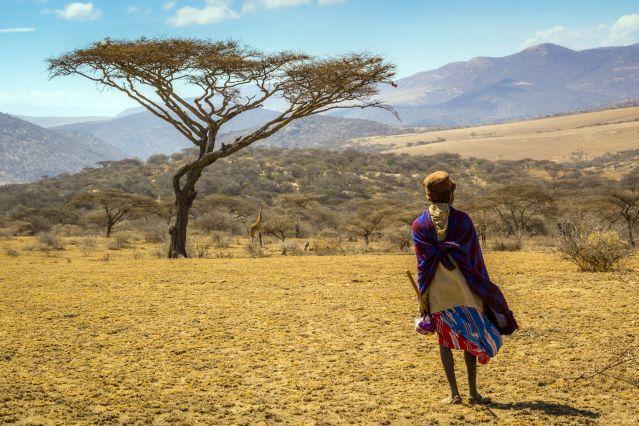 Safari en Tanzanie : partez 14 jours avec Terres d'Aventure ! Vous apprécierez : L'ambiance de brousse dès le début du voyage avec vue sur le Kilimandjaro - Les 2 jours de safaris au coeur des grandes plaines du Serengeti - La rando dans la région du Grand Rift, en pays masaï - L'univers du lac Natron et la rando rafraîchissante jusqu'aux chutes Ngare Sero - Le safari dans la caldeira du Ngorongoro - Terminer le séjour dans le magnifique parc national du Tarangire
