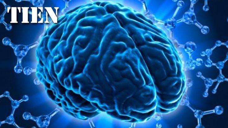 10 Onopgeloste Mysteries van de hersenen - TIEN