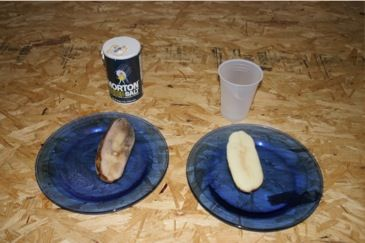 demonstration of osmosis in potato Demonstration of osmosis in potato tissue return to see and record the results of this demonstration at the end of the lesson, or next day note only the presence or absence of liquid.