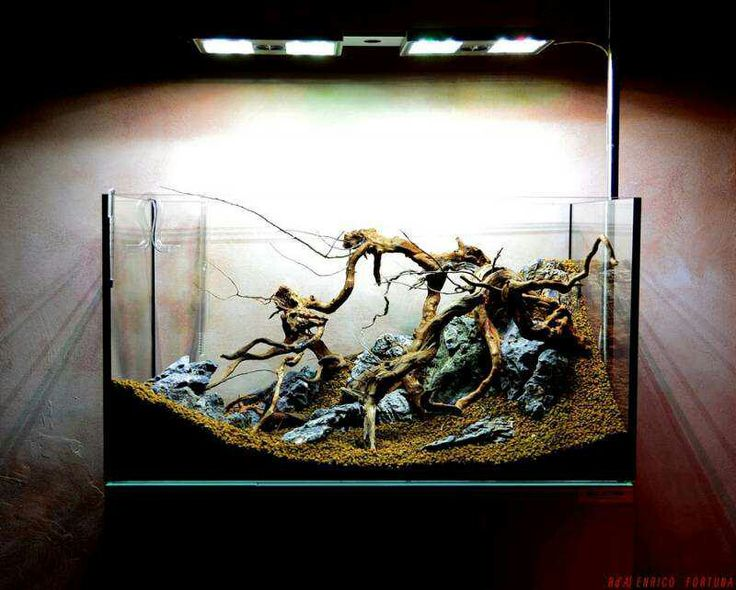 Hardscape For Elos Aquarium Company Aquarium Ideas Pinterest Aquariums Aquascaping And