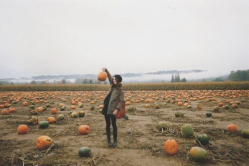 I wish that were me <3 pumpkin patches