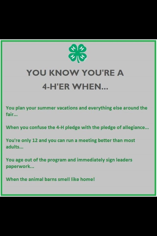 I'm FFA But The Only 60 And Able To Run A Meeting Better Than Most Custom 4 H Quotes