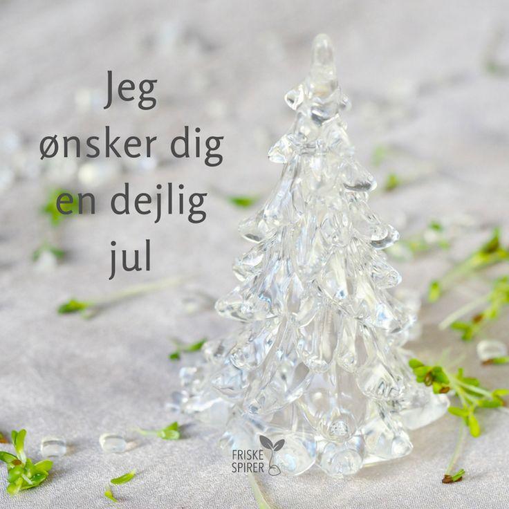 God jul fra FRISKE SPIRER #spirer #friskespirer #spiredyrkning #jul #julehilsen #grønjul