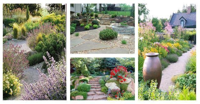 Piękny i zadbany ogród daje nam poczucie estetyki, spokoju, ładu i harmonii. #ogród #pomysły #inspiracje #kwiaty #rośliny