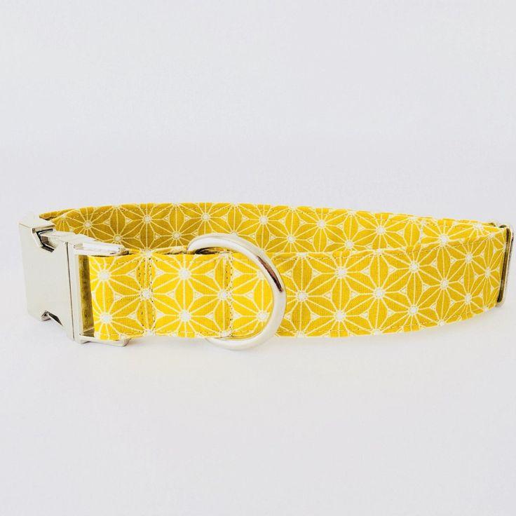 Collar perro Japan amarillo (Metal o Plástico), Collar Hebilla de clic, Collares perro, Correa perro - 4GUAUS.COM de 4GUAUS en Etsy
