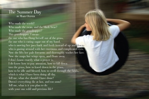 the summer day mary oliver The summer day, by mary oliver - poem 133 of poetry 180: a poem a day for american high schools, hosted by billy collins, us poet laureate, 2001-2003 (poetry and literature, library of congress).
