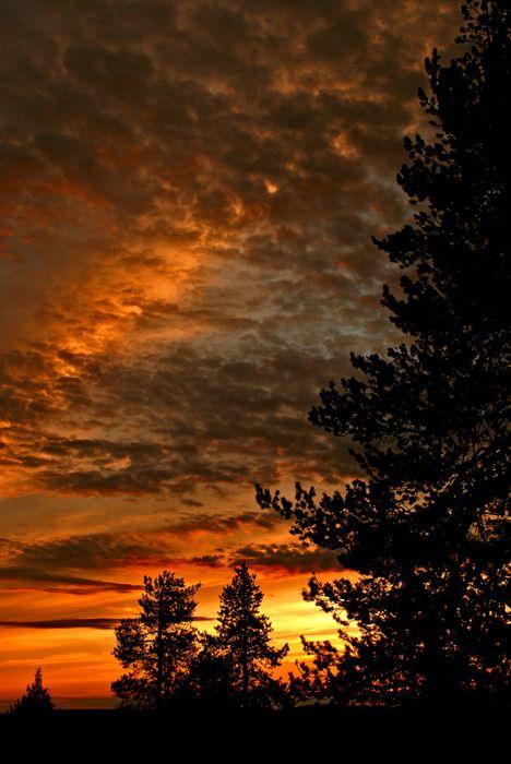 the sunBeautiful Sunris, Beautiful Photos, Sunsets Sensation, Awesome Sunsets, Sunsets Clouds, Sunris Sunsets, Beautiful Sky, Sunsets God, Sunrise Sunsets