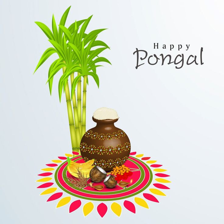 Hope you rejoice in the charm of your tradition! Wish you & your family a very Happy Bogi Pongal, Surya Pongal, Mattu Pongal!:)