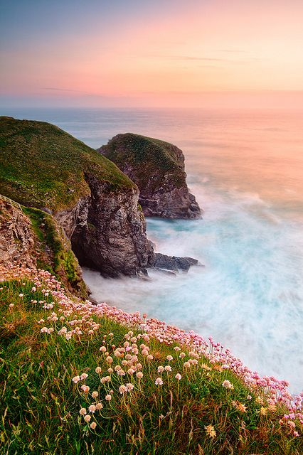 Taste of Spring along the Cornwall costline, England | by John & Tina Reid, via Flickr Wow - this would be worth the short drive to the coast this Spring #forestretreat