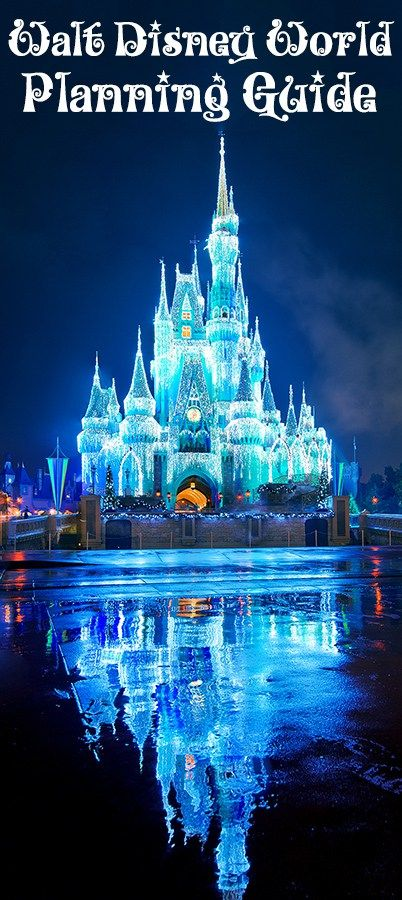 2019 Disney World Planning Guide | HP World 2019 | Disney world