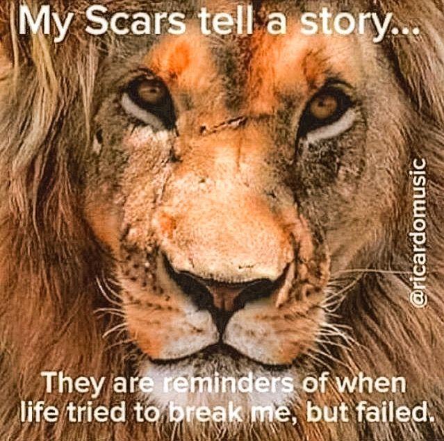 43 Best LION QUOTES & Motivational Pictures