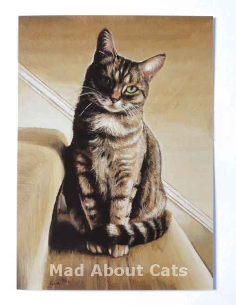 ... By Celia Pike on Pinterest | Cat Paintings, Christmas Cats and Chester