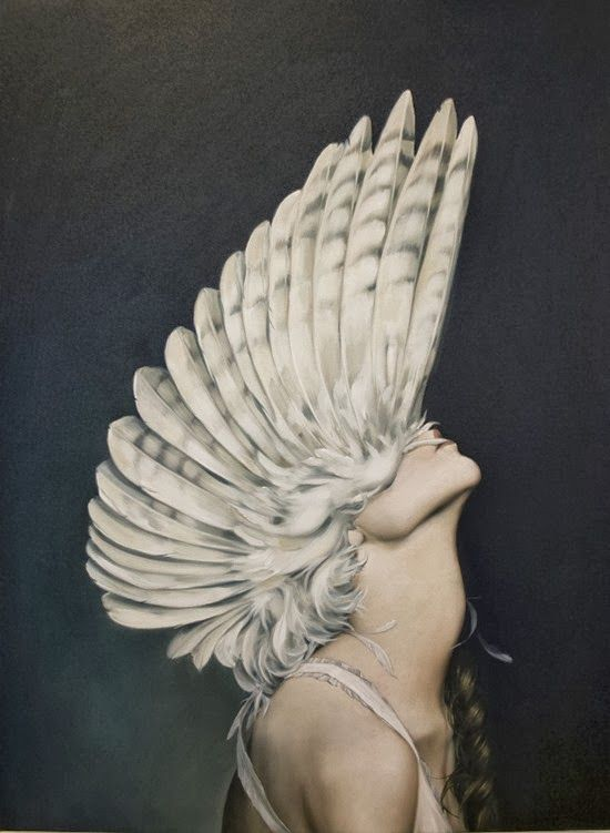 Афина птицы