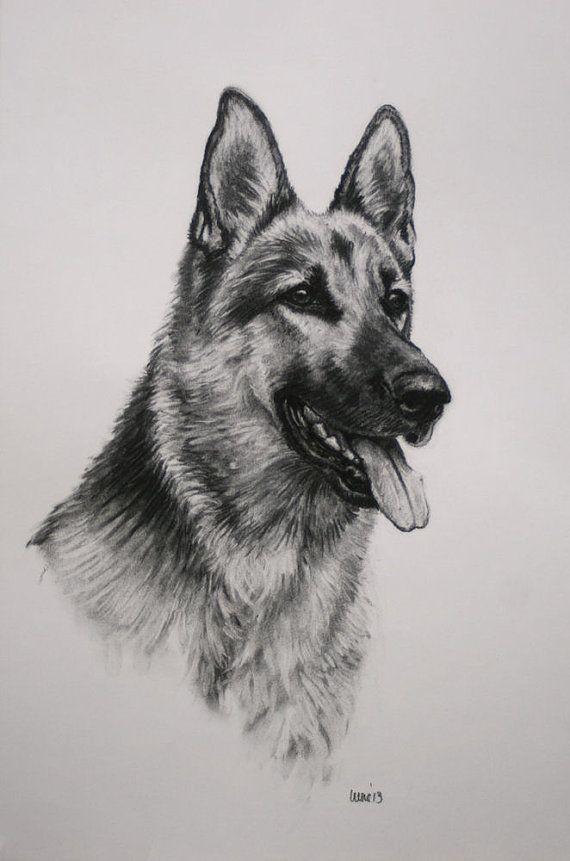 German Shepherd Alsation dog fine art Limited Edition by Terrierzs, £8.00