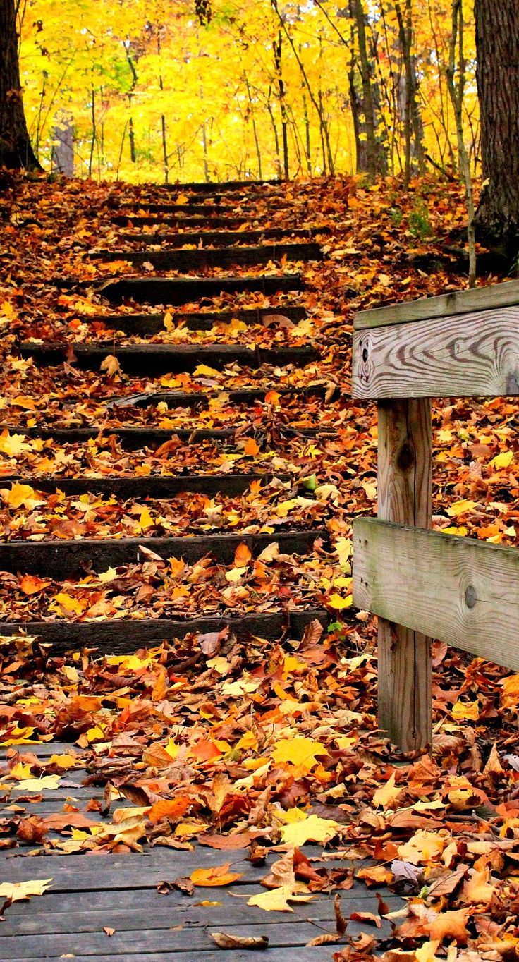 What paths will you be treading this weekend?