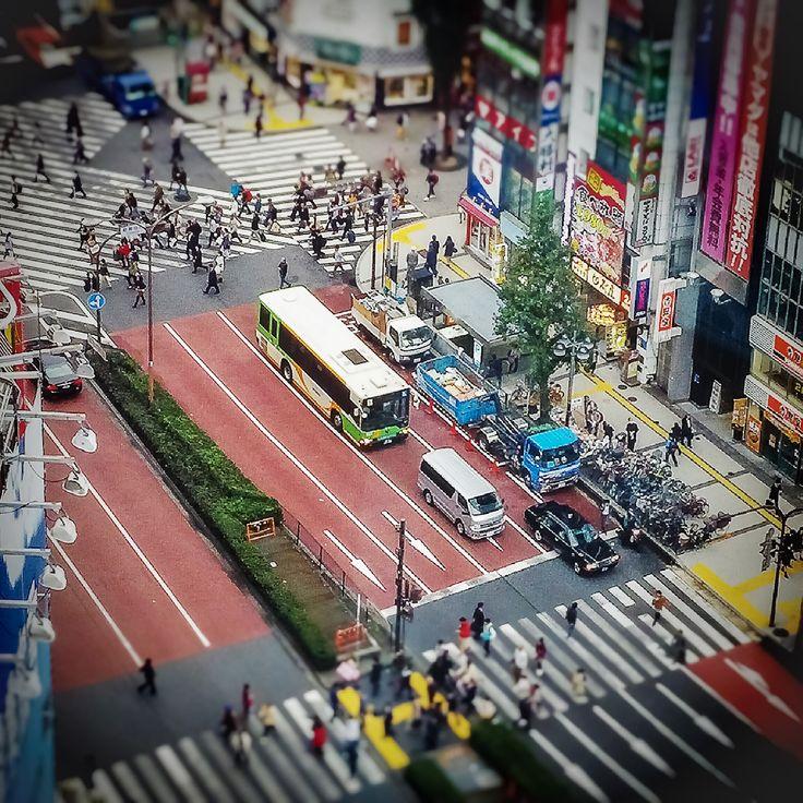 A Little Taste of Tokyo http://www.allureofelsewhere.com/home/asia/japan/tokyo/tasteoftokyo