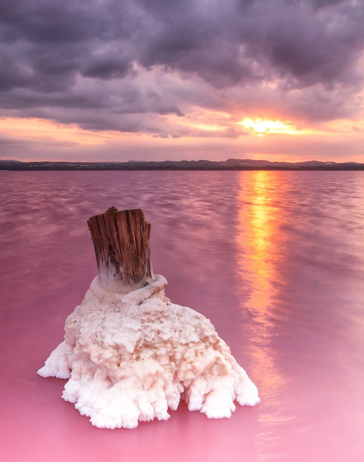 Salinas de Torrevieja | Salt Lakes-Torrevieja l Alicante | Spain They d0 go this colour and it's just beautiful!