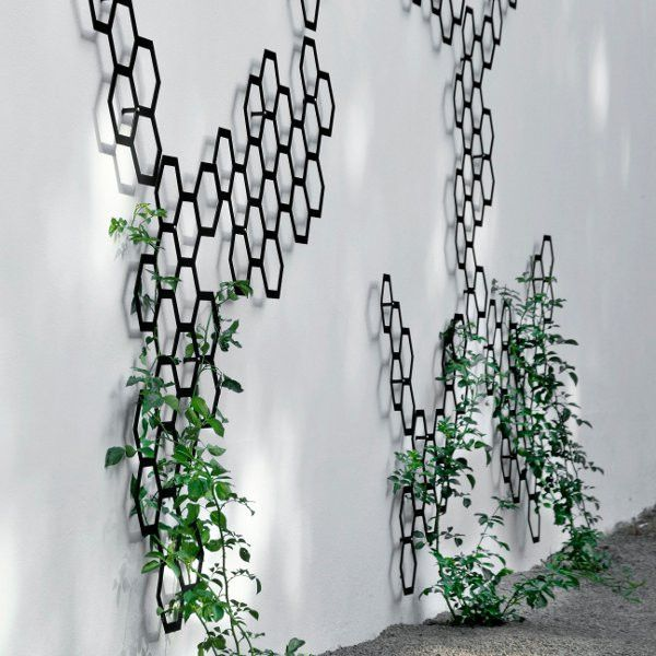 Best 25+ Metal Trellis Ideas On Pinterest | Metal Garden Trellis, Trellis  And Trellis Ideas