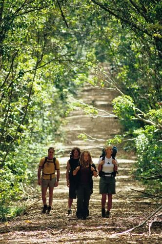 Tourism Queensland- Girringun National Park.