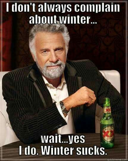 I don't always complain about Winter  . .  . Wait. Yes, I do. Winter sucks.
