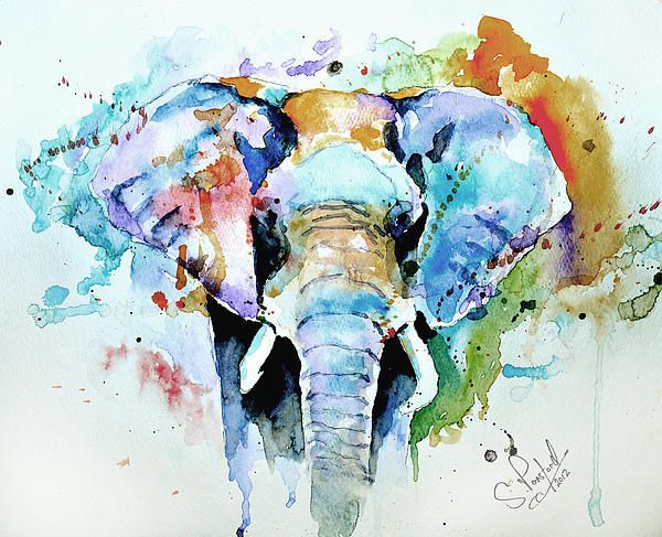 Abstract wall art painting - 1000 Ideas About Elephant Watercolor On Pinterest