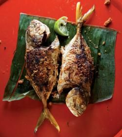 Whole fish recipes