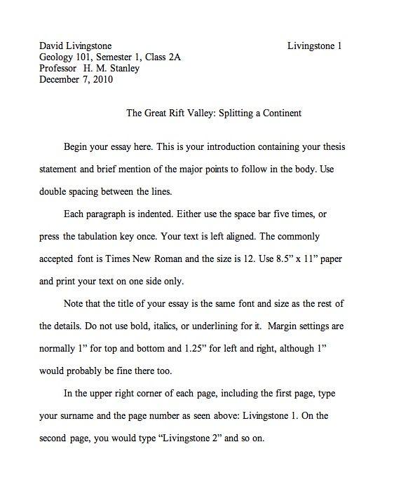 ap english sample essays